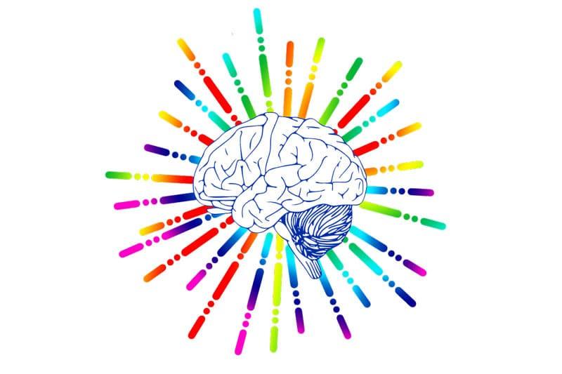 Exercitar o cérebro é essencial para a sua carreira | BIT Cursos